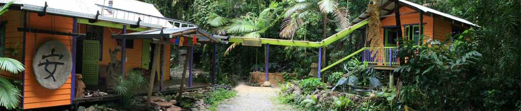 cape tribulation bed and brakfast accommodation and sculpture trail in the daintree rainforest