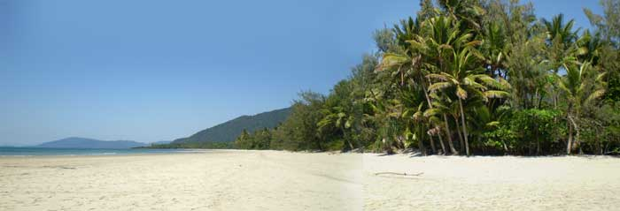 myall beach 20 minutes walk from  your cape tribulation accommodation