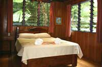bed and breakfast room in cape tribulation